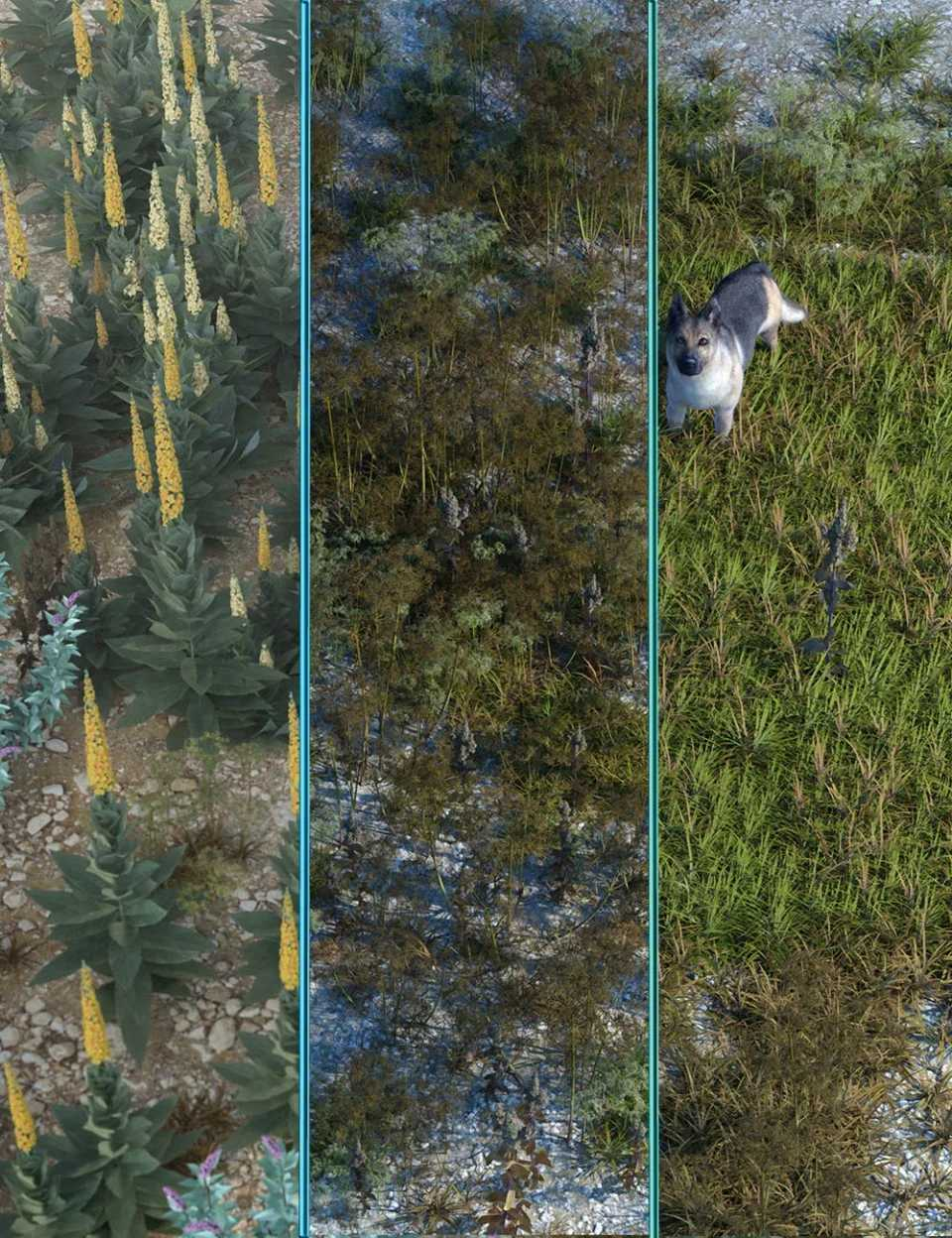 Wasteland Plants and Weeds – Low Resolution Instant Ecosystems